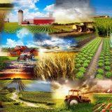 Аграрное право